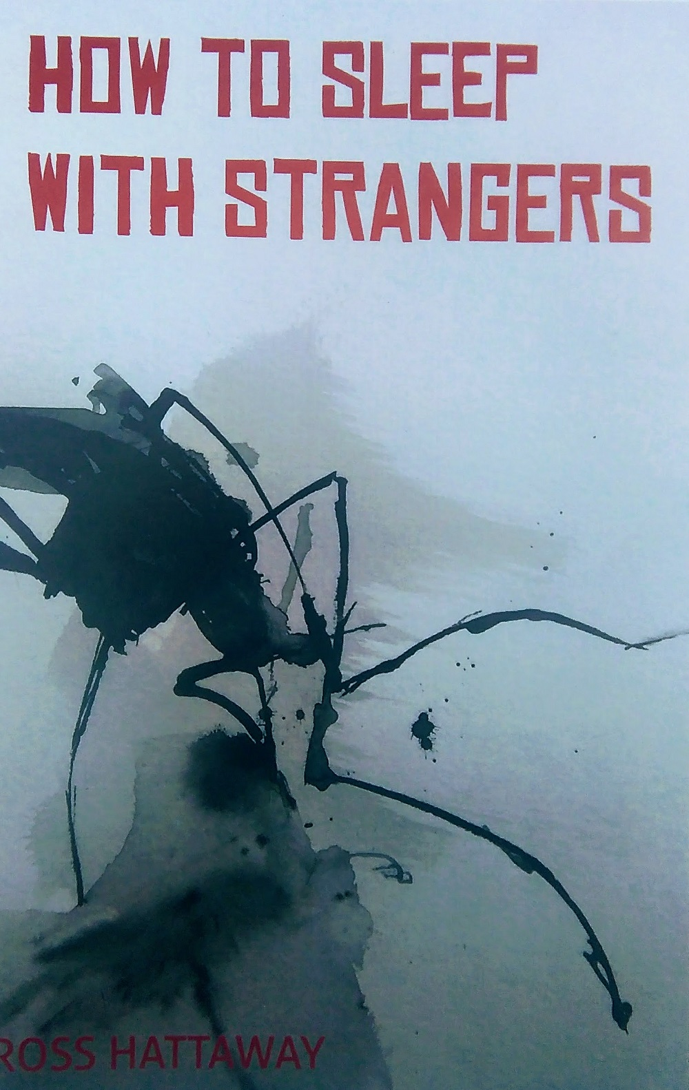 Innovative Irish poetry, third collection from Ross Hattaway How to Sleep with Strangers published by Turas Press