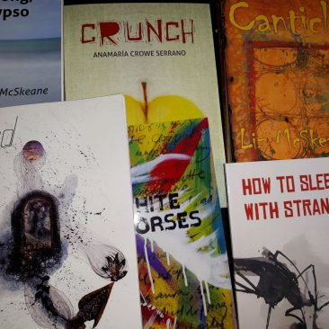 Books published by Turas Press Dublin