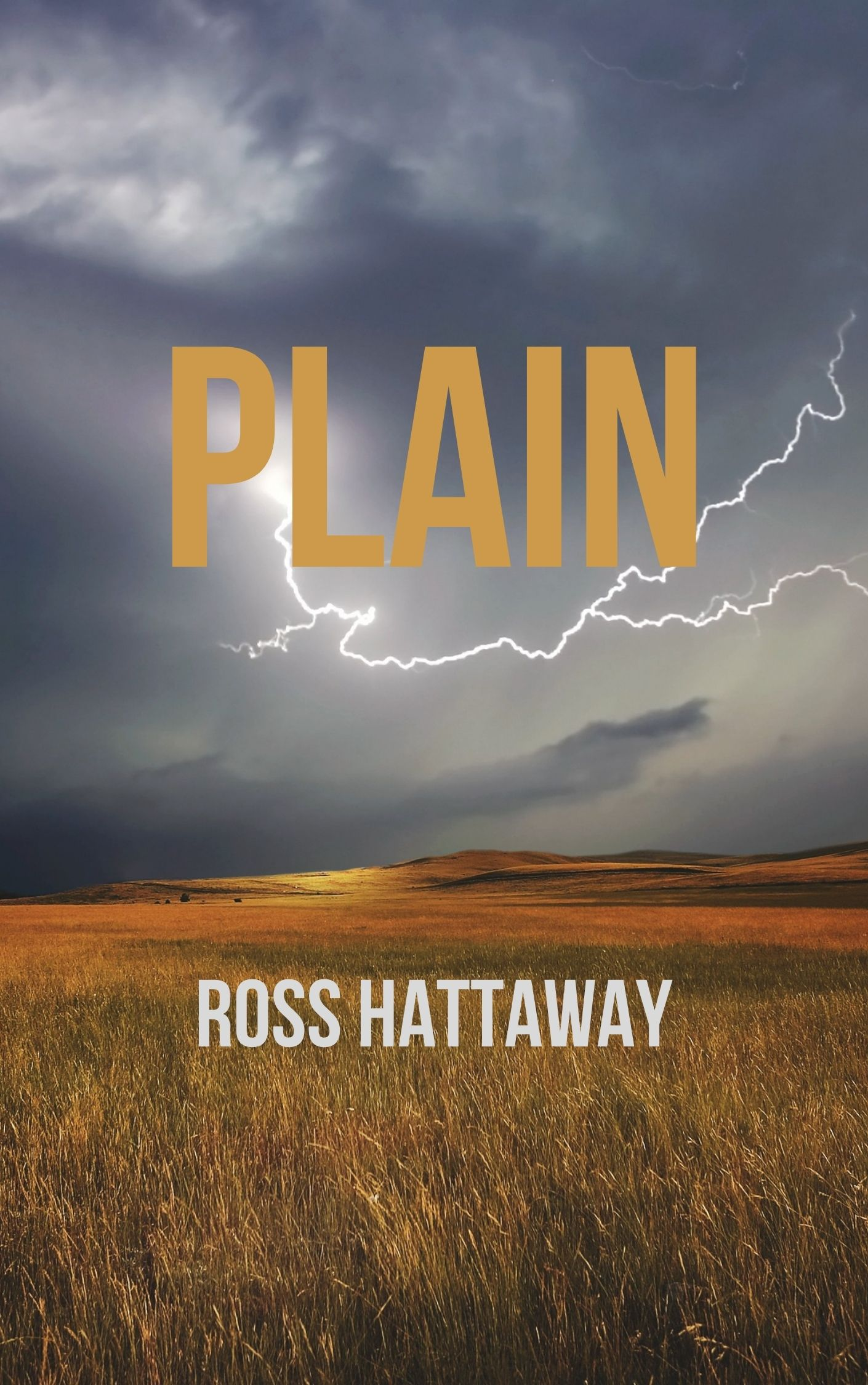Plain poetry book cover