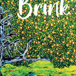 Cover of poetry collection Brink by Jo Burns